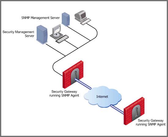 Proactive Server & Network Monitoring